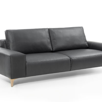 Romano - Verdi - Carbon (1)